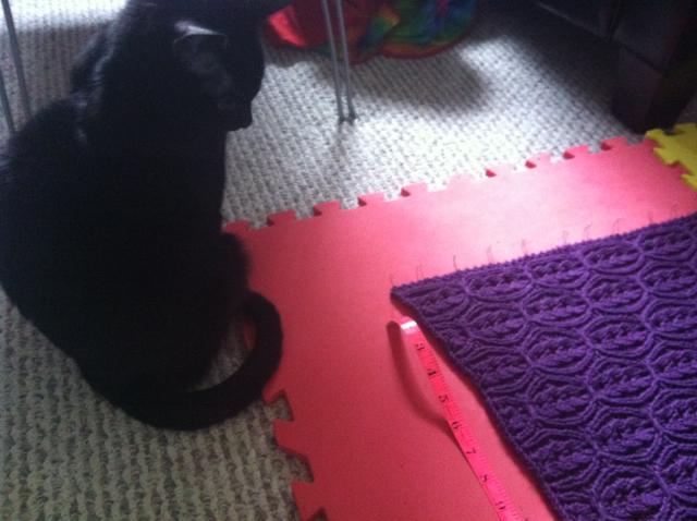Kitty inspector